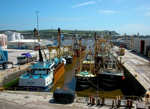 Fishing fleet at Victoria Wharf, Plymouth
